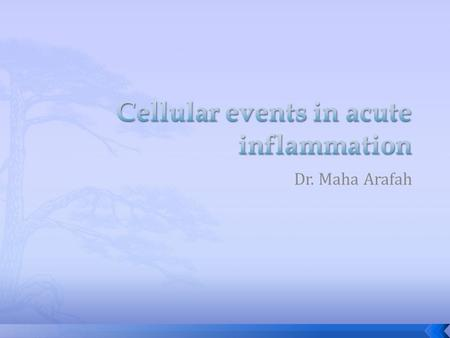 Cellular events in acute inflammation