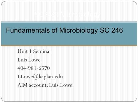 Unit 1 Seminar Luis Lowe 404-981-6570 AIM account: Luis.Lowe SC246: Microbiology Fundamentals of Microbiology SC 246.