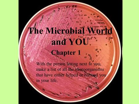 The Microbial World and YOU Chapter 1 With the person sitting next to you, make a list of all the microorganisms that have either helped or harmed you.