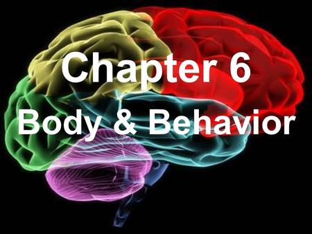 Chapter 6 Body & Behavior. Section 1 The Nervous System.