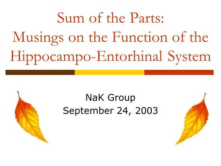 Sum of the Parts: Musings on the Function of the Hippocampo-Entorhinal System NaK Group September 24, 2003.