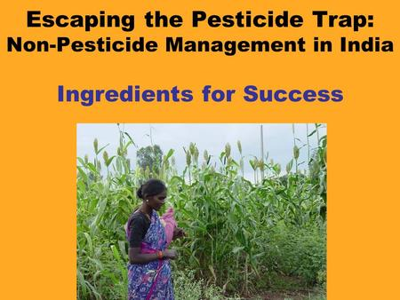 Escaping the Pesticide Trap: Non-Pesticide Management in India Ingredients for Success.