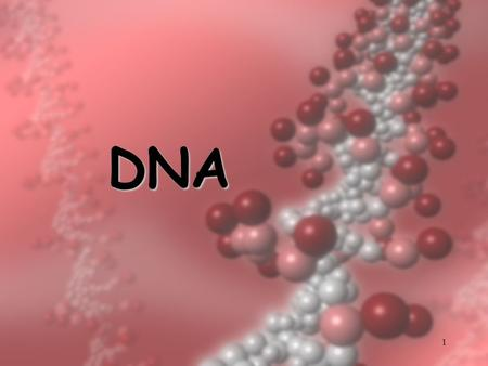 1 DNA. 2 DNA  Deoxyribonucleic acid  found in the nucleus of every cell  DNA and proteins make up chromosomes – contain traits  sections of it make.
