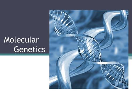 Molecular Genetics. What is this stuff? Simply: DNA contains the instructions for making proteins in a cell DNA = Deoxyribonucleic Acid The genetic/hereditary.