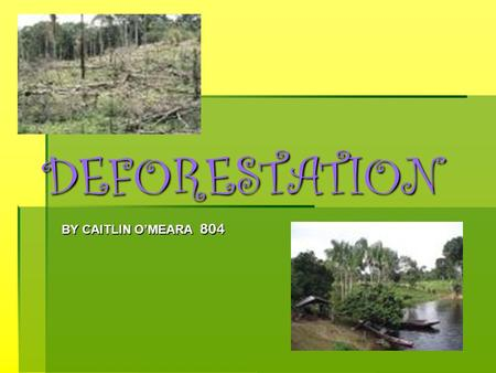 DEFORESTATION BY CAITLIN O'MEARA 804 INTRODUCTIONINTRODUCTIONINTRODUCTIONINTRODUCTION The clearing of tropical forests across the Earth has been happening.