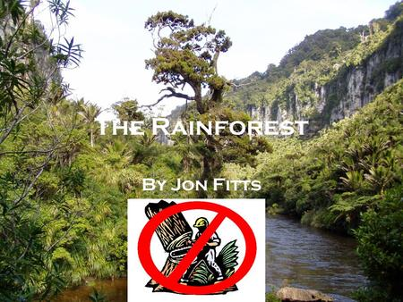 The Rainforest By Jon Fitts. The Disappearing Rainforest We are losing Earth's greatest treasures just as we are beginning to appreciate their true value.