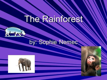 The Rainforest by: Sophie Nemec. What is causing the rainforests of Africa to disappear? What percent of the rainforests are already gone?  Logging Companies.
