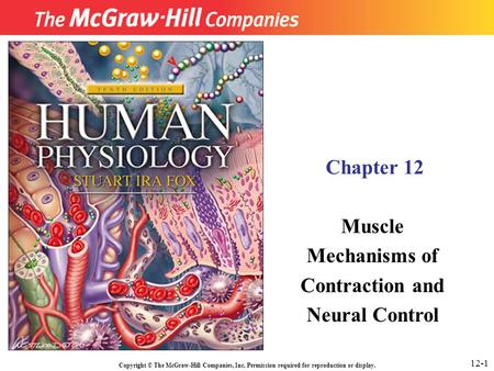 Copyright © The McGraw-Hill Companies, Inc. Permission required for reproduction or display. Chapter 12 Muscle Mechanisms of Contraction and Neural Control.