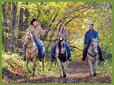 Ready to Ride Continuing an active lifestyle with horses after an arthritis diagnosis Amber Wolfe AgrAbility Project Coordinator Arthritis Foundation.