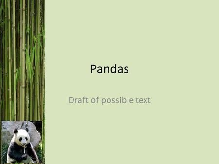 Pandas Draft of possible text. Welcome to Chinese Class! What is your name? My name is…..