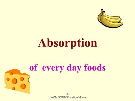 © UWCM/SONMS/nutrition/MJohn Absorption of every day foods.