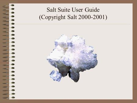 Salt Suite User Guide (Copyright Salt 2000-2001).