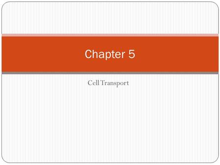 Cell Transport Chapter 5. In the passive transport of materials A. cells must use energy when materials enter the cell. B. cells use energy when materials.