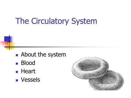 The Circulatory System About the system Blood Heart Vessels.