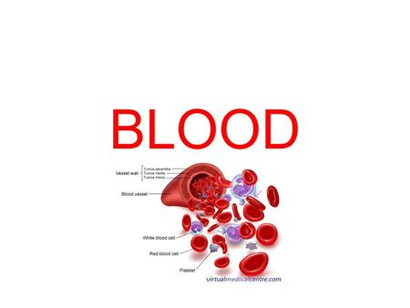 BLOOD. CARDIOVASCULAR Composed of heart, blood vessels and blood also lymph and lymph vessels.. Heart is the pump Blood vessels transport system Blood.