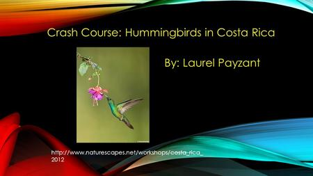 Crash Course: Hummingbirds in Costa Rica By: Laurel Payzant  2012.