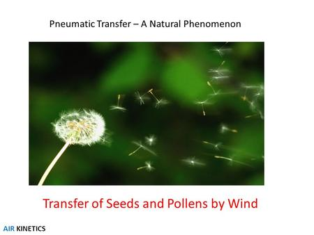 Pneumatic Transfer – A Natural Phenomenon Transfer of Seeds and Pollens by Wind AIR KINETICS.