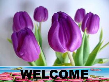 WELCOME. Mst. Ismot ara Assistant Teacher (Computer Studies) Molamgarihat B.L High school. Kalai. Joypurhat.   Teacher's Introduction.