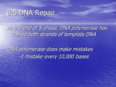 8.5 DNA Repair At the end of S phase, DNA polymerase has copied both strands of template DNA DNA polymerase does make mistakes -1 mistake every 10,000.
