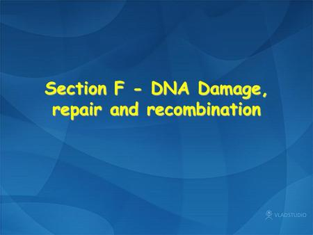 Section F - DNA Damage, repair and recombination.