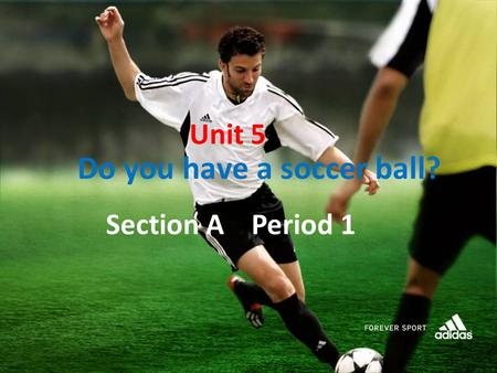 Unit 5 Do you have a soccer ball? Section A Period 1.