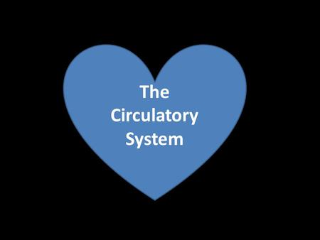 "The Circulatory System. Open circulatory system ""Blood"" is emptied into the body cavity."