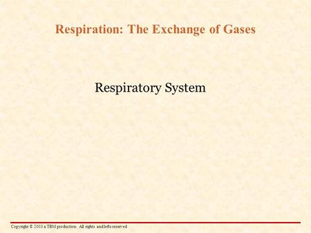 Copyright © 2003 a TBM production. All rights and lefts reserved Respiration: The Exchange of Gases Respiratory System.