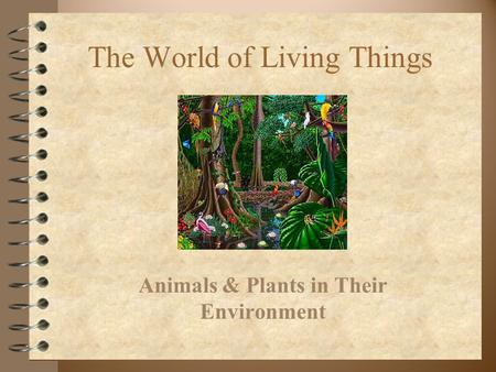 The World of Living Things Animals & Plants in Their Environment.