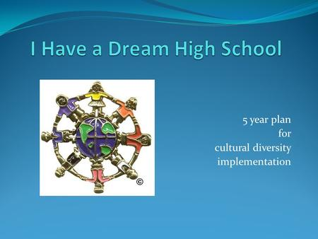 5 year plan for cultural diversity implementation.