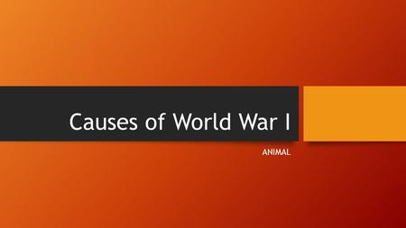 Causes of World War I ANIMAL.