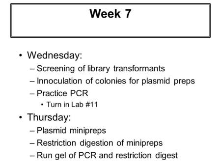 Week 7 Wednesday: –Screening of library transformants –Innoculation of colonies for plasmid preps –Practice PCR Turn in Lab #11 Thursday: –Plasmid minipreps.
