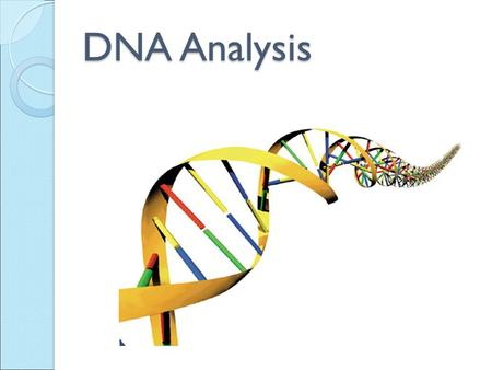 DNA Analysis. What is DNA? Deoxyribonucleic Acid Genes found on a chromosome are composed of DNA DNA contains all of our body's genetic material.