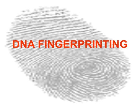 DNA FINGERPRINTING. 1.What do you think DNA fingerprinting is? 2. What do you think DNA fingerprinting can be used for?
