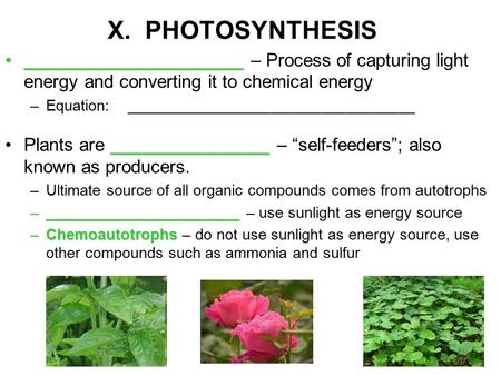 X. PHOTOSYNTHESIS ____________________________________________ – Process of capturing light energy and converting it to chemical energy –Equation: __________________________________.