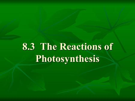 8.3 The Reactions of Photosynthesis