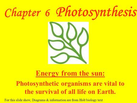 Chapter 6 Photosynthesis Energy from the sun: Photosynthetic organisms are vital to the survival of all life on Earth. For this slide show, Diagrams &