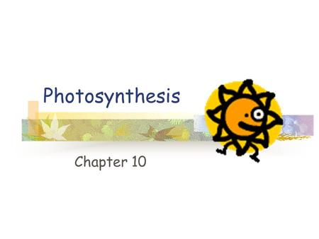 Photosynthesis Chapter 10 Energy source Autotrophs: Producers Make own organic molecules Heterotrophs: Consumers.