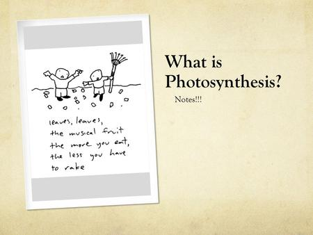 What is Photosynthesis? Notes!!! What is photosynthesis? Photosynthesis is the process of absorbing light and using its energy to produce glucose. Plants,