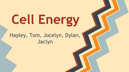 Cell Energy Hayley, Tom, Jocelyn, Dylan, Jaclyn. Cellular Respiration Photosynthesis Energy and Life.
