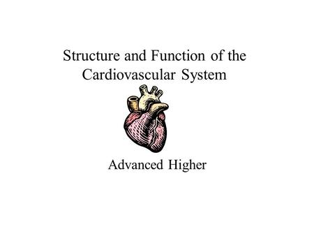 Structure and Function of the Cardiovascular System Advanced Higher.