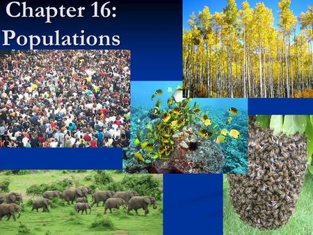 Chapter 16: Populations.