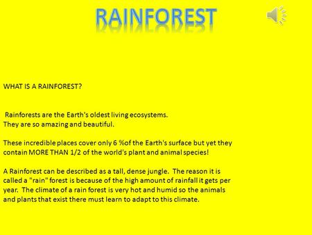 WHAT IS A RAINFOREST? Rainforests are the Earth's oldest living ecosystems. They are so amazing and beautiful. These incredible places cover only 6 %of.