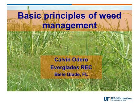 Basic principles of weed management