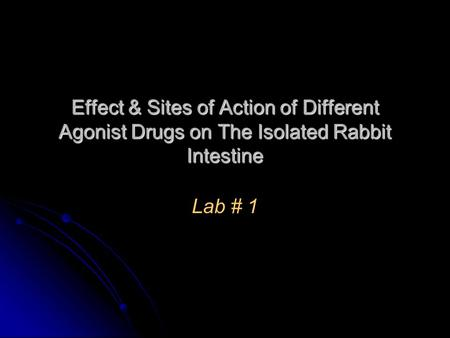 Effect & Sites of Action of Different Agonist Drugs on The Isolated Rabbit Intestine Lab # 1.