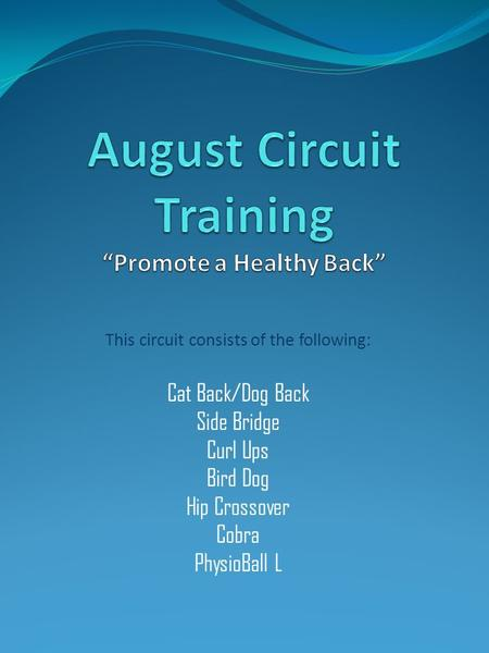 This circuit consists of the following: Cat Back/Dog Back Side Bridge Curl Ups Bird Dog Hip Crossover Cobra PhysioBall L.