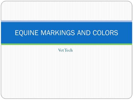 Vet Tech EQUINE MARKINGS AND COLORS. Classifications of Horses: A pony is a horse under 14.2 hands tall that weighs between 500 and 900 pounds. A light.
