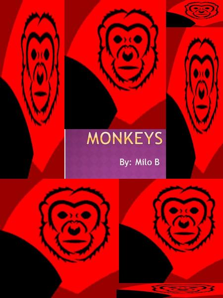 By: Milo B  Introduction…………………..1  Monkeys of The World………………..2-3  Apes and Monkeys…………………..4  Monkey body parts…………………5  FunFacts……………………6 