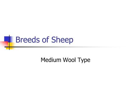 Breeds of Sheep Medium Wool Type. A small review… As you will recall, yesterday we talked about what? Breeds of sheep of the Fine wool Type. Classification.