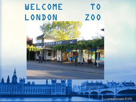 WELCOME TO LONDON ZOO. London Zoo is one of the most famous of all London attractions. It was opened in 1828 by the Zoological Society of London.