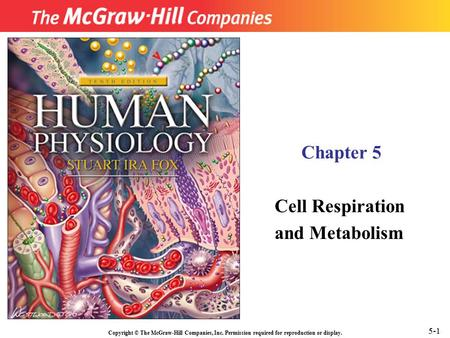 Copyright © The McGraw-Hill Companies, Inc. Permission required for reproduction or display. Chapter 5 Cell Respiration and Metabolism 5-1.